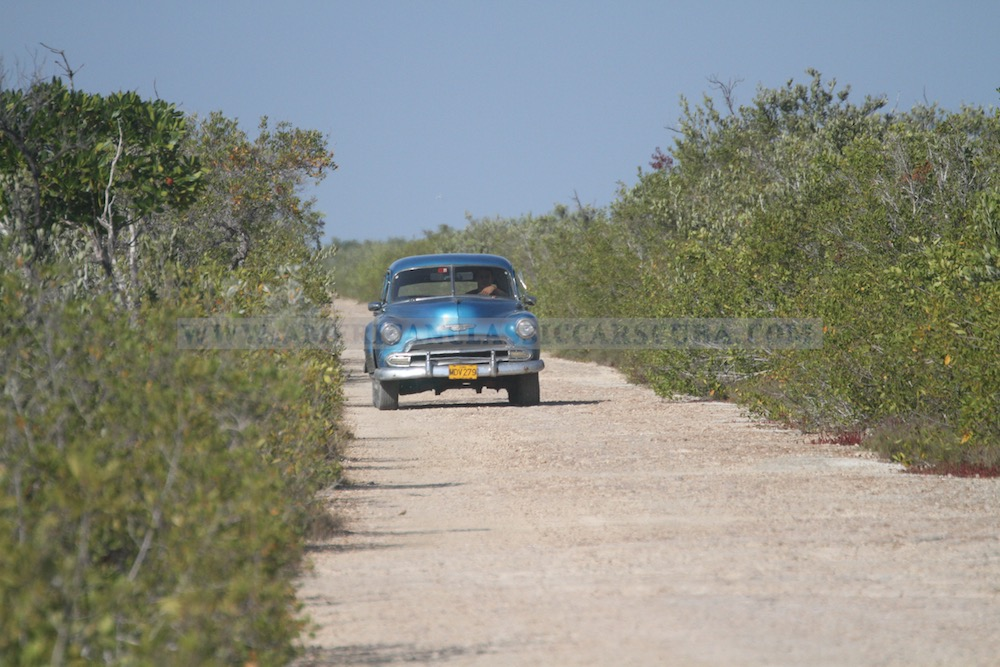 Chevy on the backroads of the Zapata Peninsula